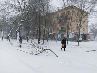 Уссурийск накрыло снегом