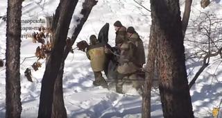 Козел Тимур спровоцировал тигра Амура в Приморском сафари-парке на нападение