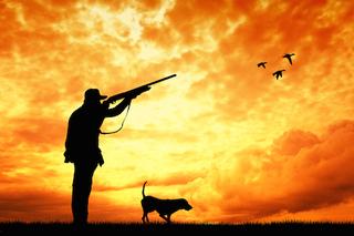На Днепропетровщине начинается сезон охоты