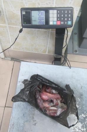 Уссурийская таможня задержала дериваты животных