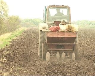 Из-за непогоды фермеры не могут закончить посадки