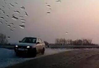 Под Уссурийском машина на гололеде ушла в кювет. Видео