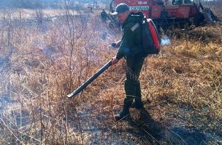Более 100 человек задействовано в тушении лесных пожаров в Приморье