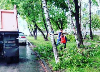 Стал известен масштаб потерь от урагана в Уссурийске
