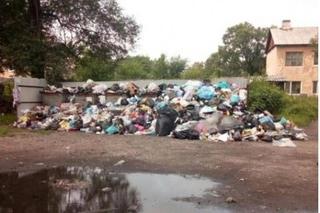 Активисты добились ликвидации свалки в жилом микрорайоне Уссурийска