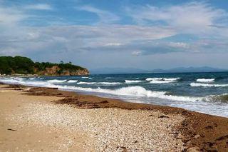 Ещё два пляжа в Хасанском районе Приморье ждут отдыхающих
