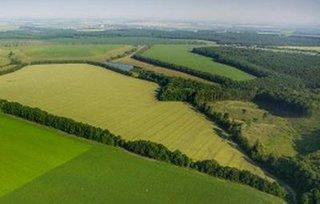 В Уссурийском городском округе свой Дальневосточный гектар уже оформили 113 россиян