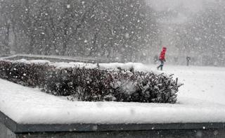 Весна в Приморье начнется с мощнейшего снегопада