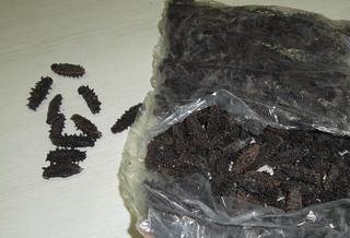 Более 4 кг сушеного трепанга обнаружили уссурийские таможенники у россиянки
