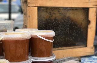 Фестиваль меда пройдет в Приморье