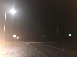 В Уссурийске под колесами авто погиб пешеход