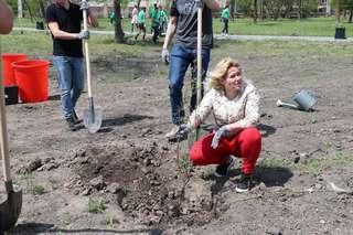 Более 100 деревьев посадили сегодня в парке имени Чумака