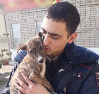В Уссурийске сотрудники полиции помогли бездомному щенку обрести любящего хозяина