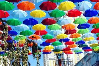Аллея парящих зонтиков появится в Уссурийске