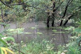 В городских реках Уссурийска продолжается подъем воды