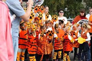 В Уссурийске в День тигра соберут огромный пазл