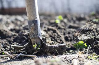 В Уссурийске мужчина черенком от лопаты убил своего знакомого
