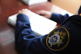 СК проводит проверку по факту смерти девочки, разбившейся на тюбинге в Приморском крае