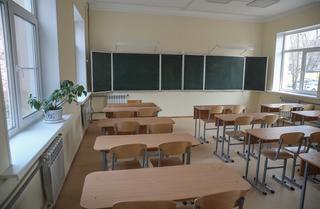 Школы, колледжи и вузы Приморья постепенно переходят на дистанционный формат обучения