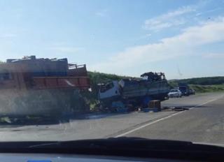 В Приморье автомобиль с пчелиными ульями попал в смертельное ДТП