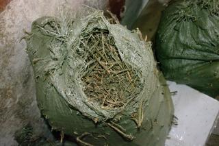 У жителя Уссурийска нашли шесть мешков конопли