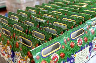 Новогодние подарки от Губернатора приморским детям доставят до 20 декабря