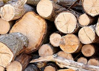 Купить дрова по льготной цене могут жители Уссурийска