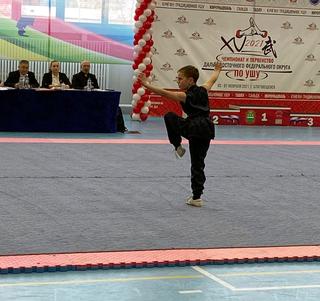 Приморские спортсмены приняли участие в Чемпионате и  Первенстве ДВФО по  ушу таолу