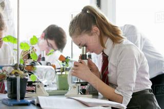 Школы с уклоном: пять профилей обучения определены в Уссурийске