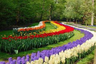 Уссурийск превратится в город-сад