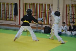 Турнир по Восточному Боевому Единоборству Кобудо среди школьников прошел в Уссурийске