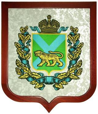 На пост губернатора Приморья претендуют три кандидата