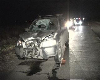 Смерть пешехода на Новоникольском шоссе: личность погибшего установить не могут