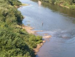 Уровень загрязнения рек Приморья оценивается, как катастрофически грязный