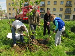 На станции юных натуралистов прошло мероприятие «Готовимся к озеленению города»