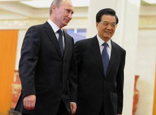 Путин обсудит с лидером КНР создание заповедника дальневосточного леопарда